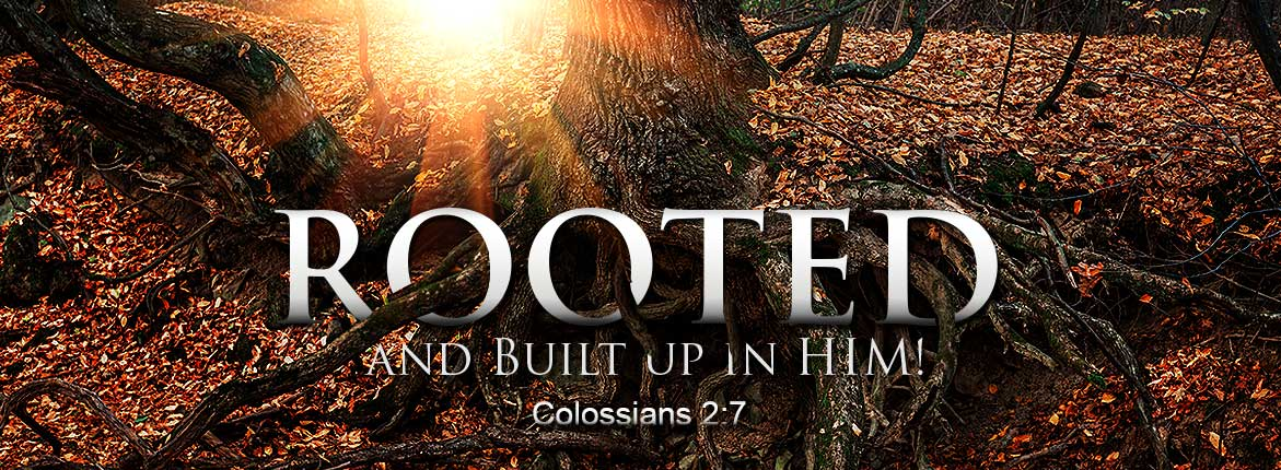 Rooted and Built Up In Him! - Colossians 2:7